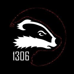BadgerBOTS